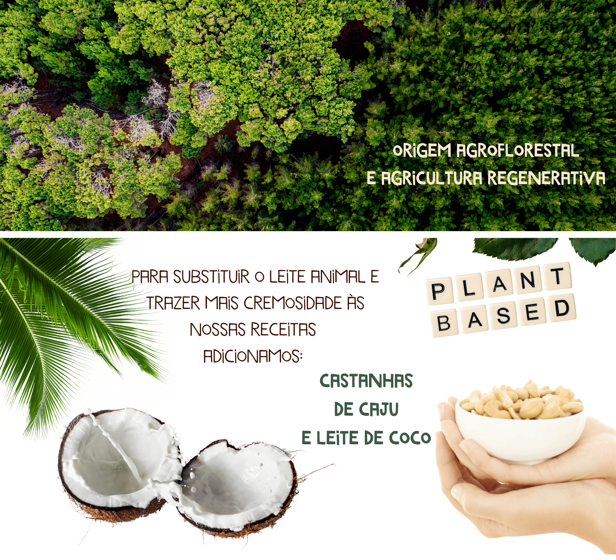 agroflorestal vegano plantbased