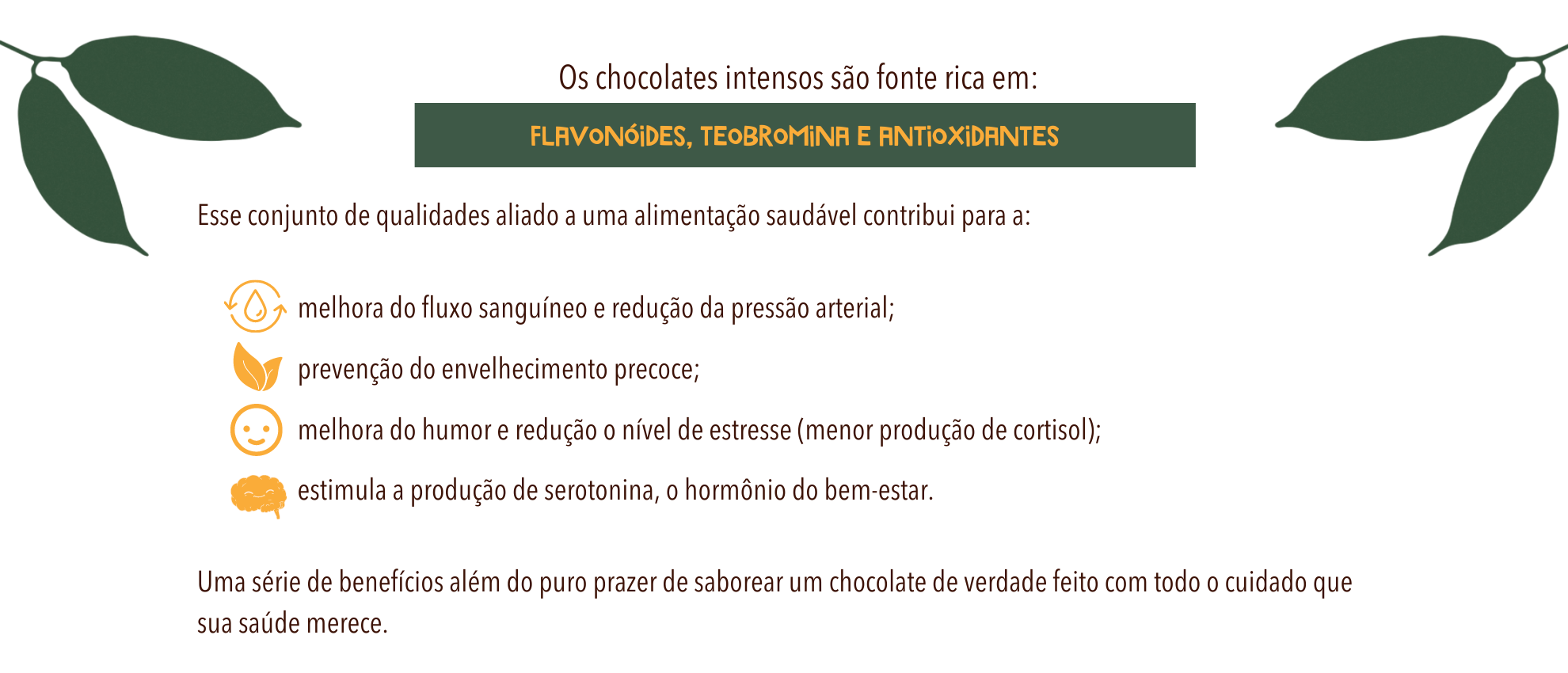 chocolate intenso 70 cookoa 4