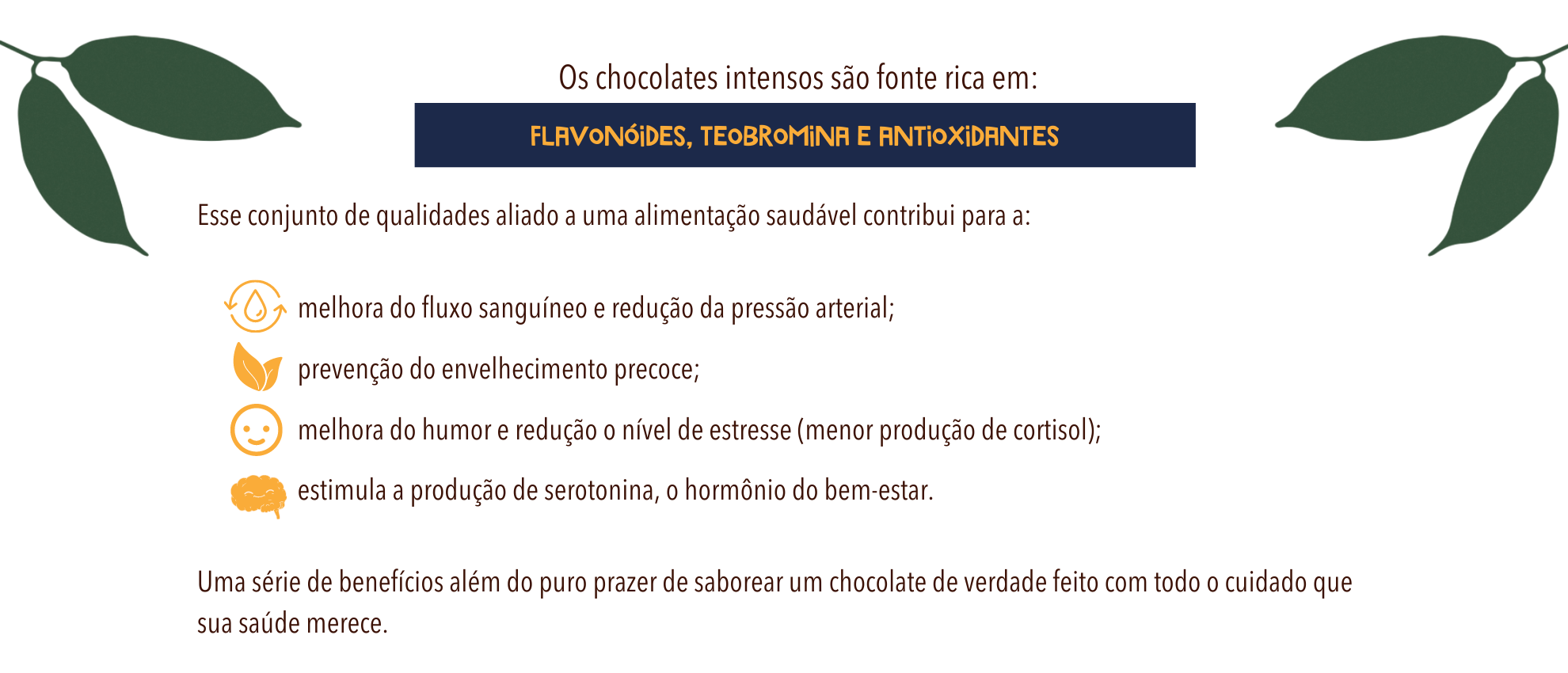 chocolate intenso 80 cookoa 2