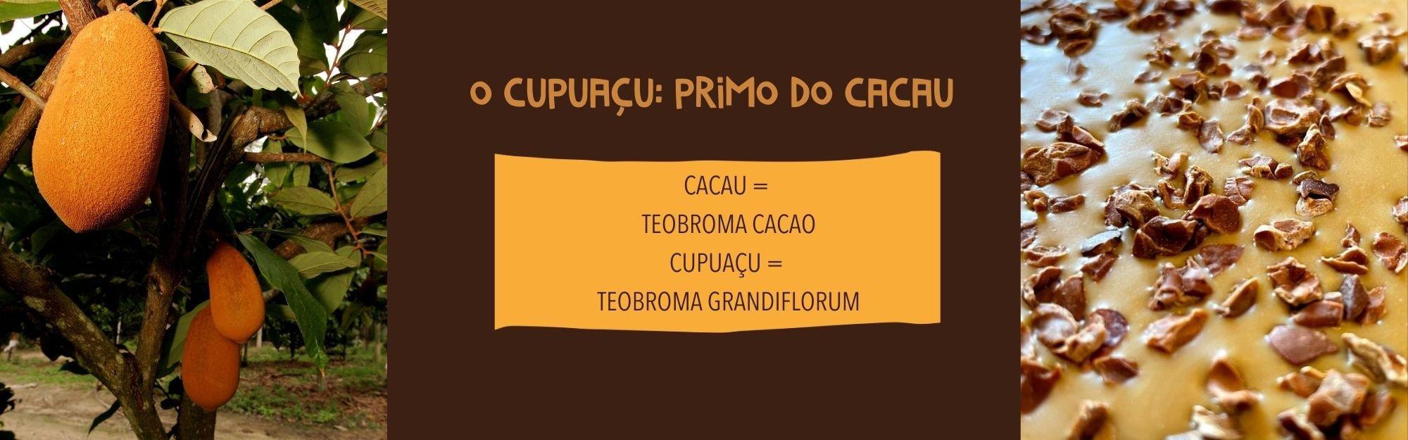 cookoa chocolates amma duo caramelo bahia cupuau